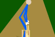 Stick Cricket Flash