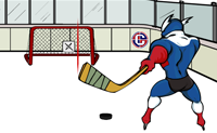 Capitain Cage Hockey